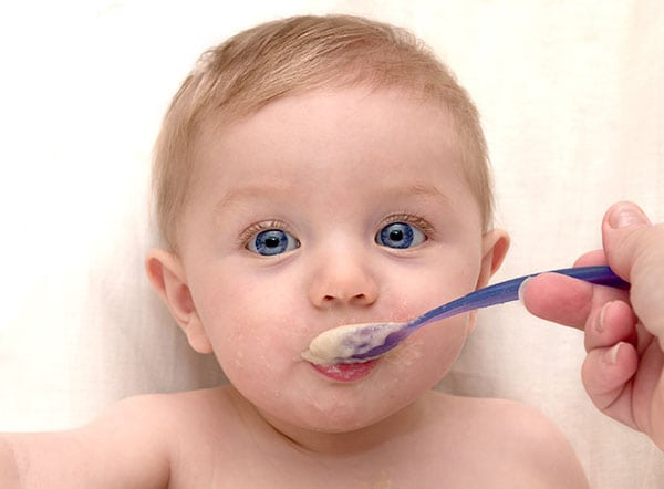 Spoon fed weaning